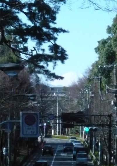 井の頭からの富士.JPG